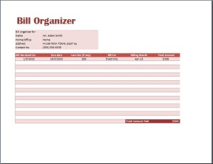 MS Excel Comprehensive Bill Organizer
