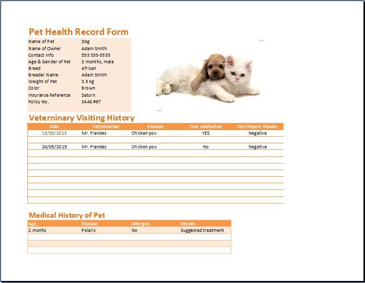 Ms excel pet health record table template word templates for Pet health record template