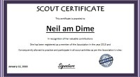 Scout Performance Award Certificate