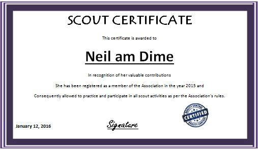 Scout Performance Award Certificate  Word  Excel Templates
