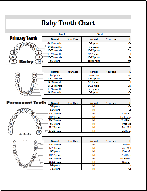 Baby Tooth Eruption Record and Information Excel Chart – Baby Teeth Chart