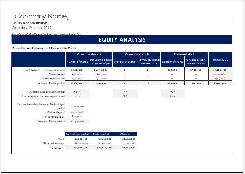 shareholder equity report worksheet template for ms excel