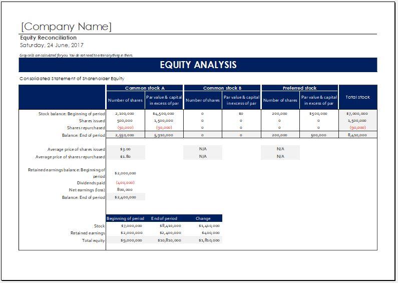 Shareholder Equity Report Worksheet Template For MS Excel