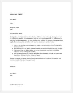 Disciplinary Decision of Demotion of an Employee