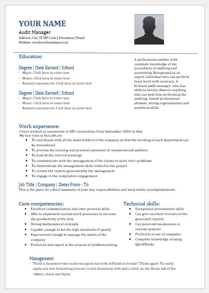 audit manager resume templates for ms word