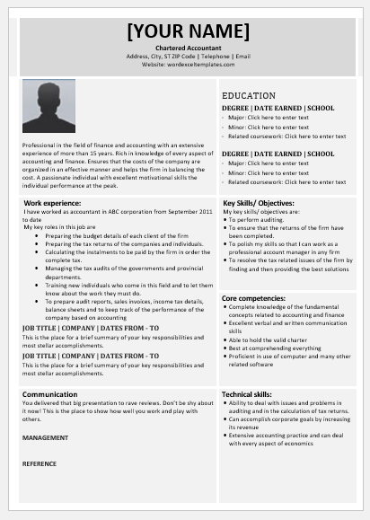 Chartered Accountant Resume
