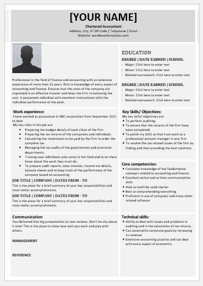 Chartered Accountant Resume