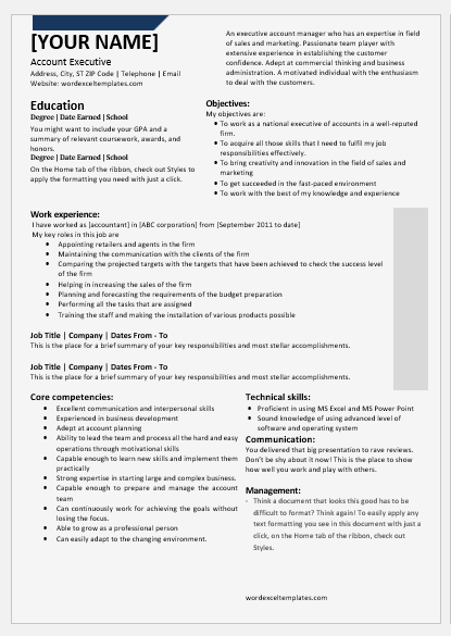 Account Executive Resume | National Account Executive Resume Templates For Word Word Excel