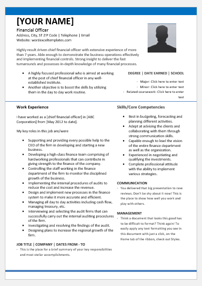 Chief Financial Officer Resume Template for Word | Word