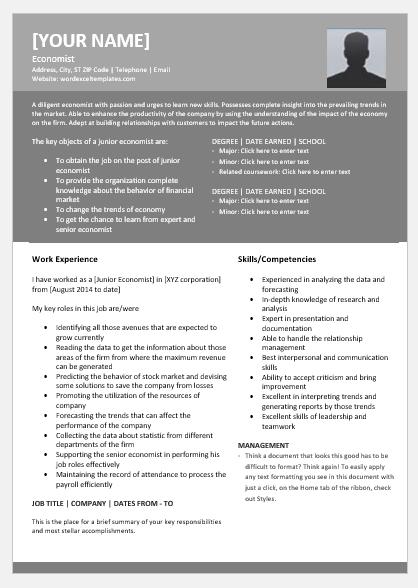 Economics resume topic business plan