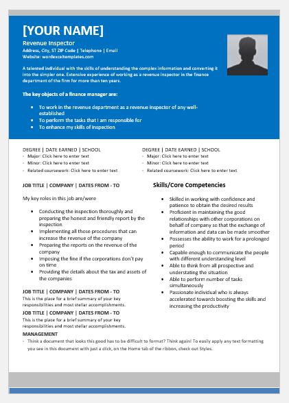 Revenue Inspector Resume